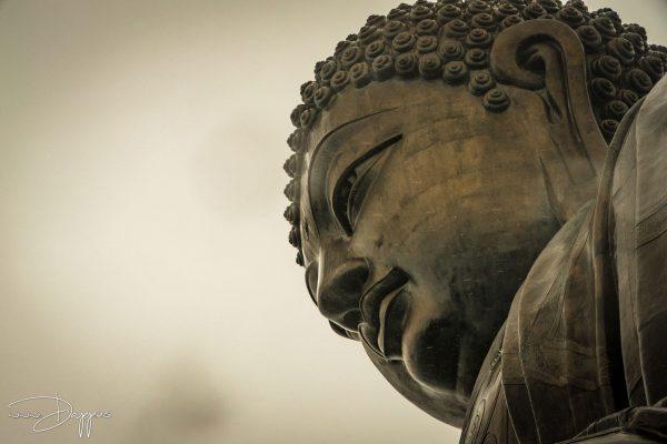 Buddha photography