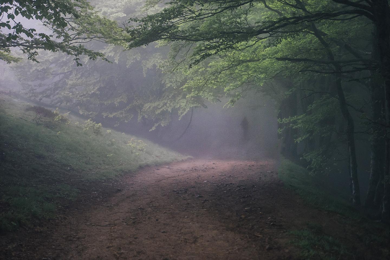 Storyteller Photo Mission 16:  Eerie