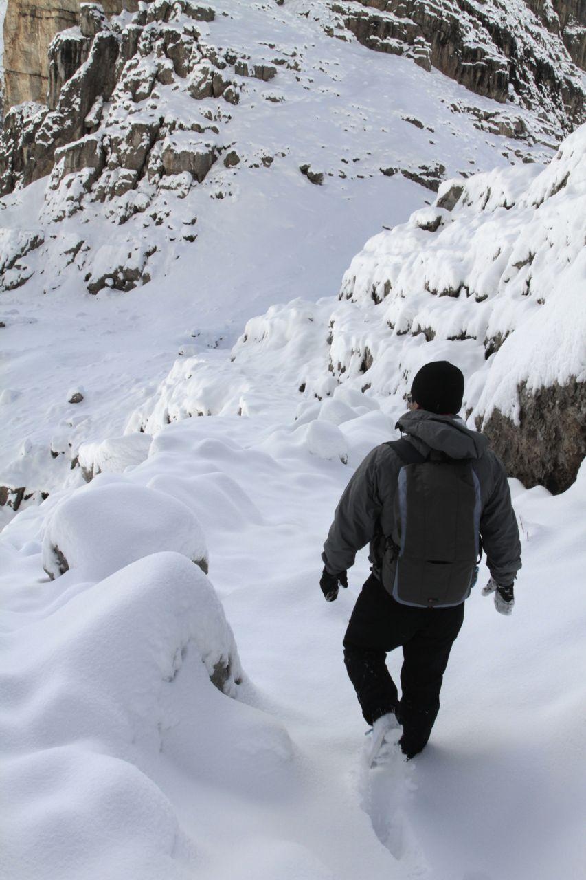Luis snow