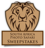 Win a 10-day South Africa Photo Safari