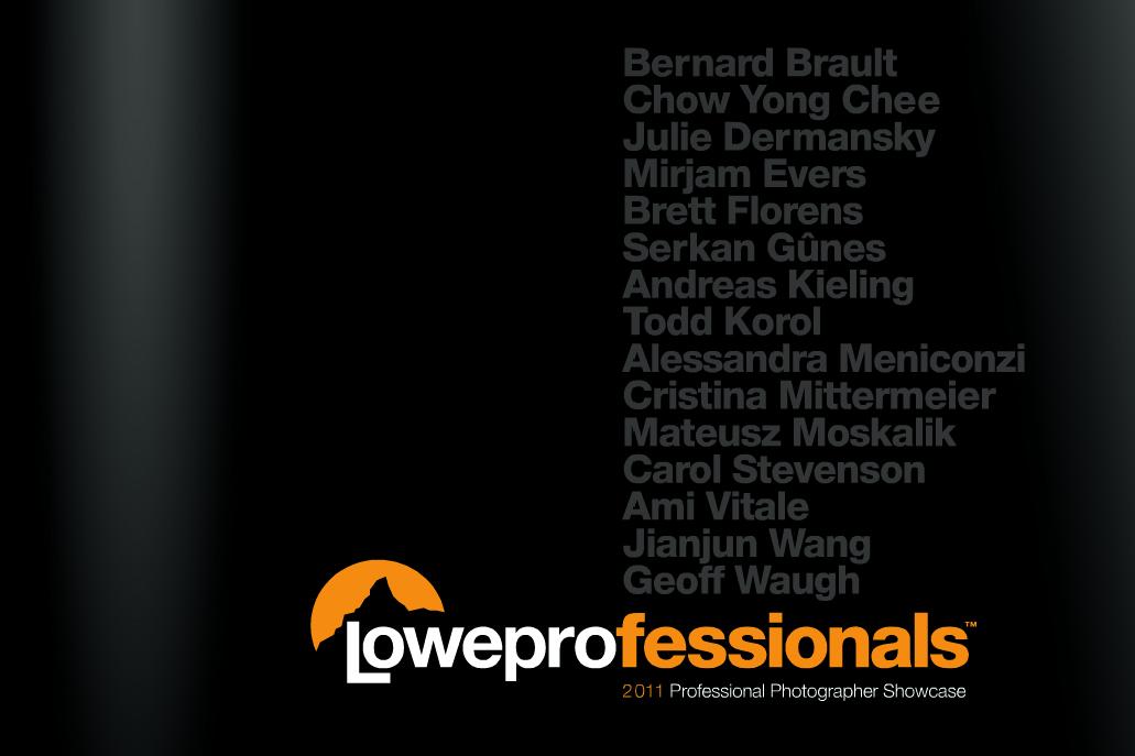 2011 Loweprofessionals