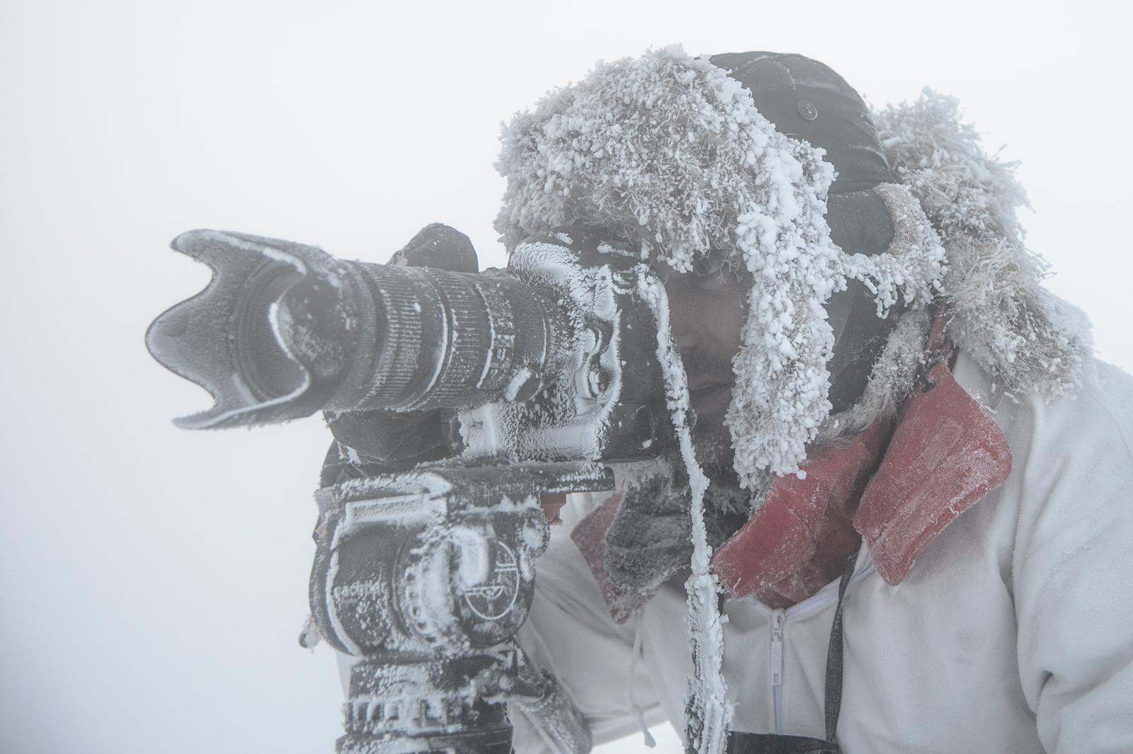 Super Arctique by Photographer Vincent Munier – The Lowepro Blog LD92